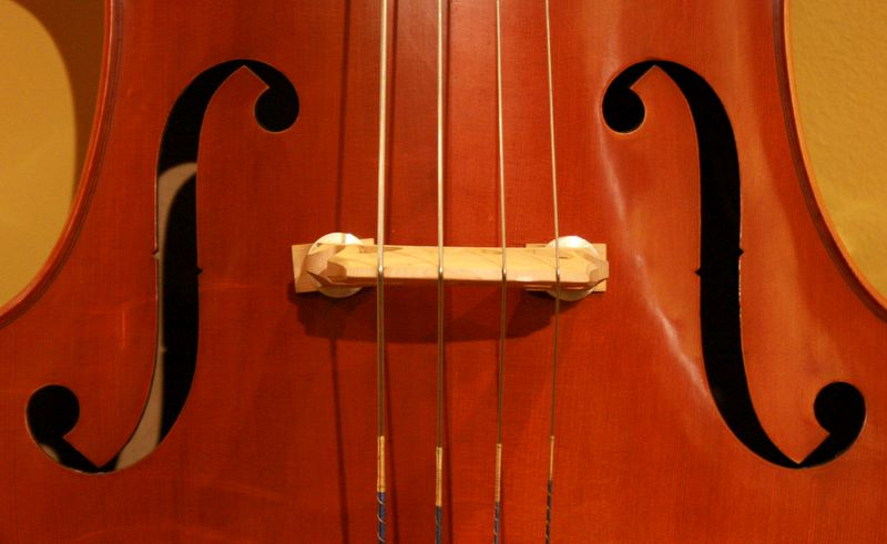 bass bridge at the Long Island Violin Shop